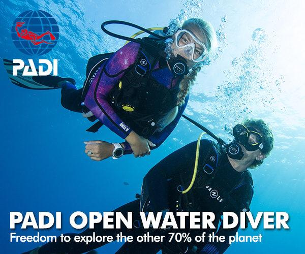PADI-OpenWater-Diver-course