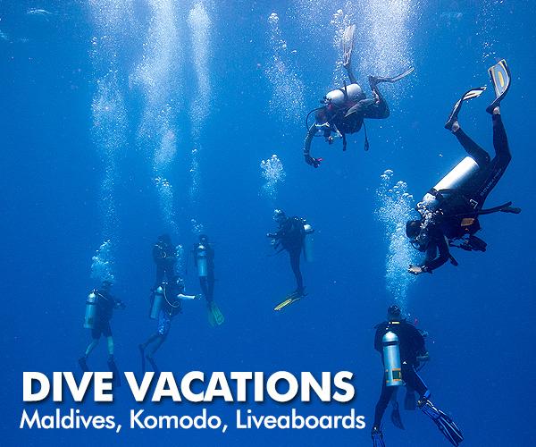 Planet Scuba India - Scuba Diving in India, PADI Scuba Courses