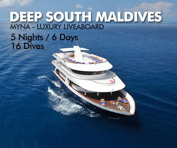 maldives-myna-liveboard