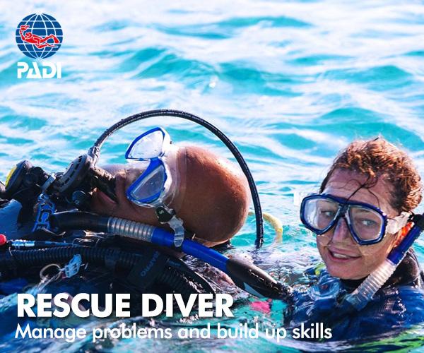 PADI recuse diver course