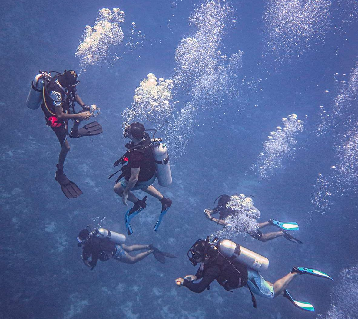 dive in India