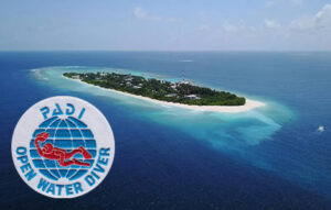 DIVE UKULHAS PACKAGE